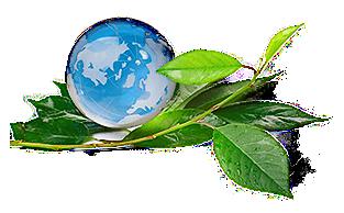 ekologinen muuttopalvelu